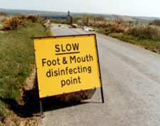 Photo of a Foot and Mouth disinfecting point sign